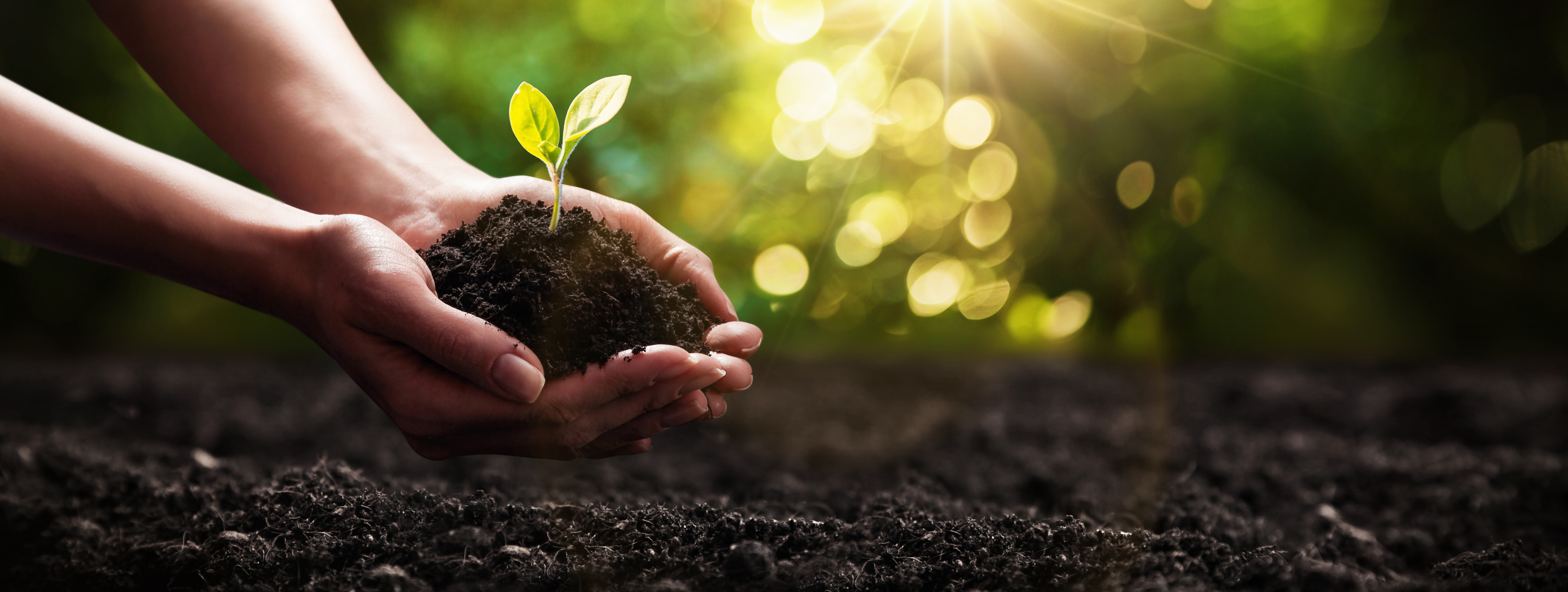 Environmental Good is a Good Thing | Sam's Natural